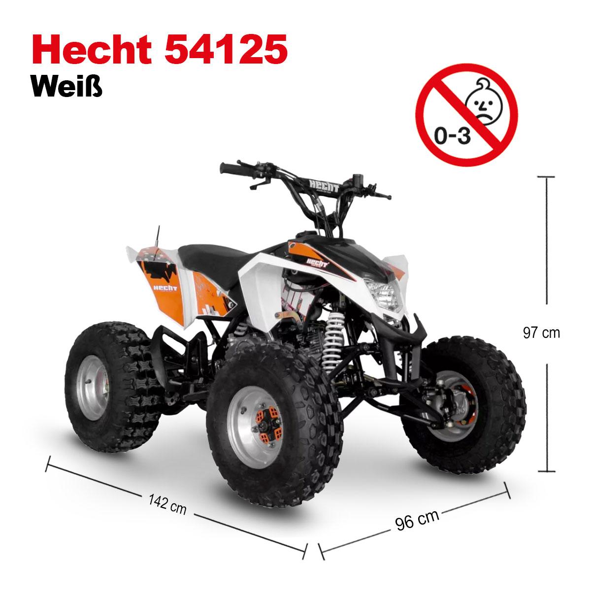 hecht 54125 quad 125ccm 4 takt benzin quad pocketbike kinderquad motocross atv ebay. Black Bedroom Furniture Sets. Home Design Ideas