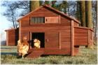 XXL Freiland Hühner-Farm