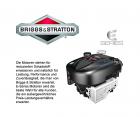 HEcht 551 SB Briggs & Stratton Motor Radantrieb